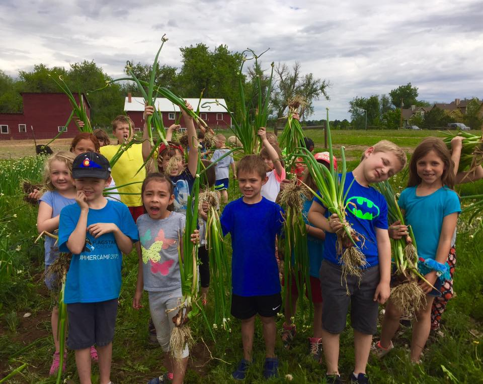 Kids at a summer camp at Ollin Farms show off their harvest (Source: Ollin Farms Facebook page)