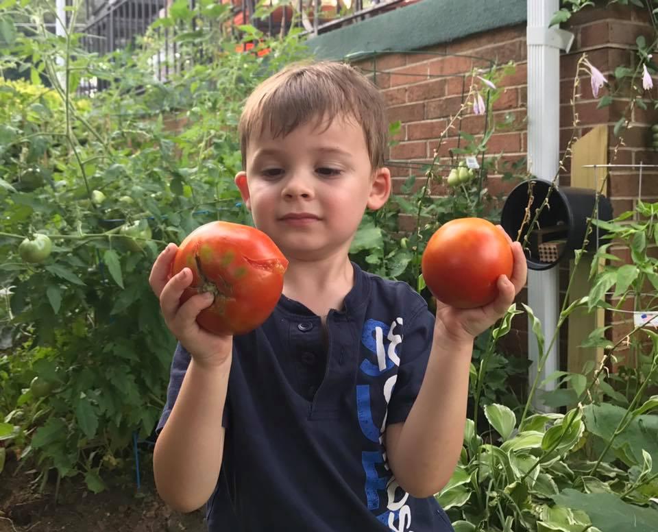 1. Grow a home garden. - Nutritious, convenient, community-building.