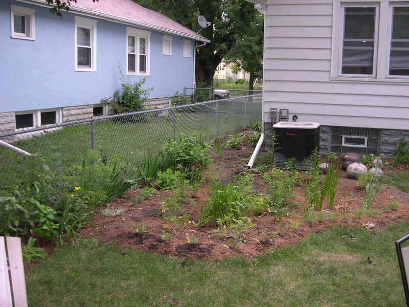 4. Manage stormwater with an edible garden. - Good for infrastructure and good for you.
