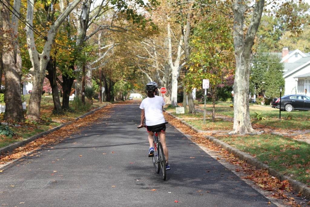Quiet residential streets play an important role in a safe biking network (Source: Johnny Sanphillippo)