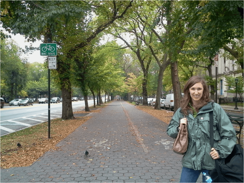 Boulevard/Avenue - Designed to carry relatively high amounts of car traffic, but include investment in and care for the pedestrian realm.Sometimes boulevards have separated access lanes for turning, biking or reaching homes and businesses on the street.