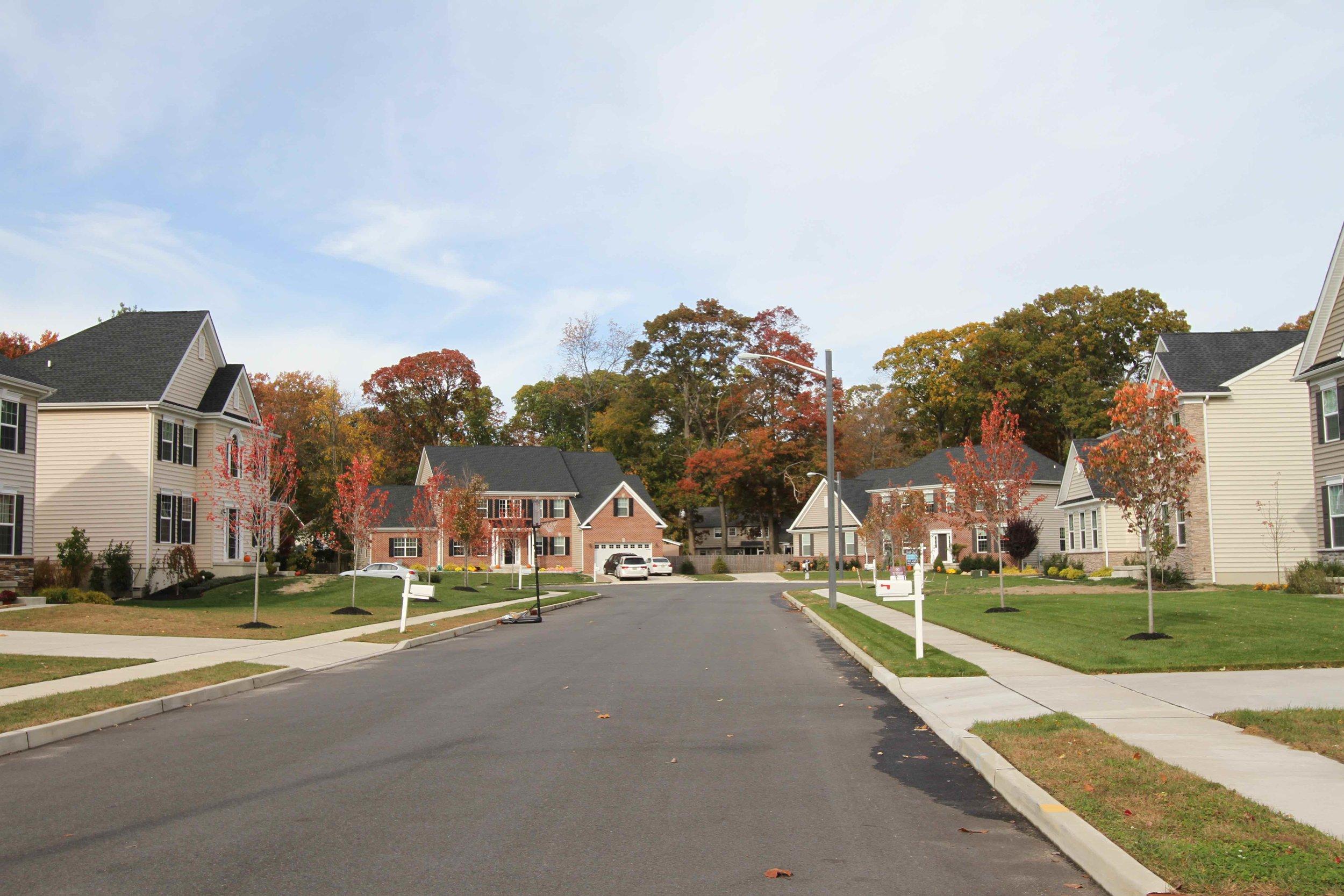 The suburban model of development