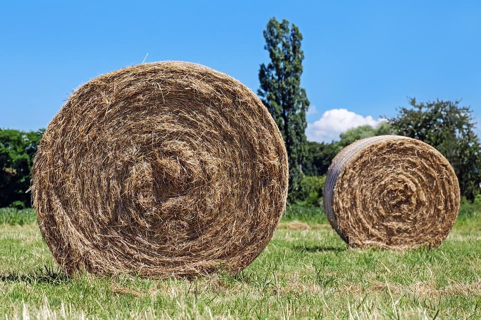 In Lafayette, sticking a few hay bales on your land might get you out of paying taxes.