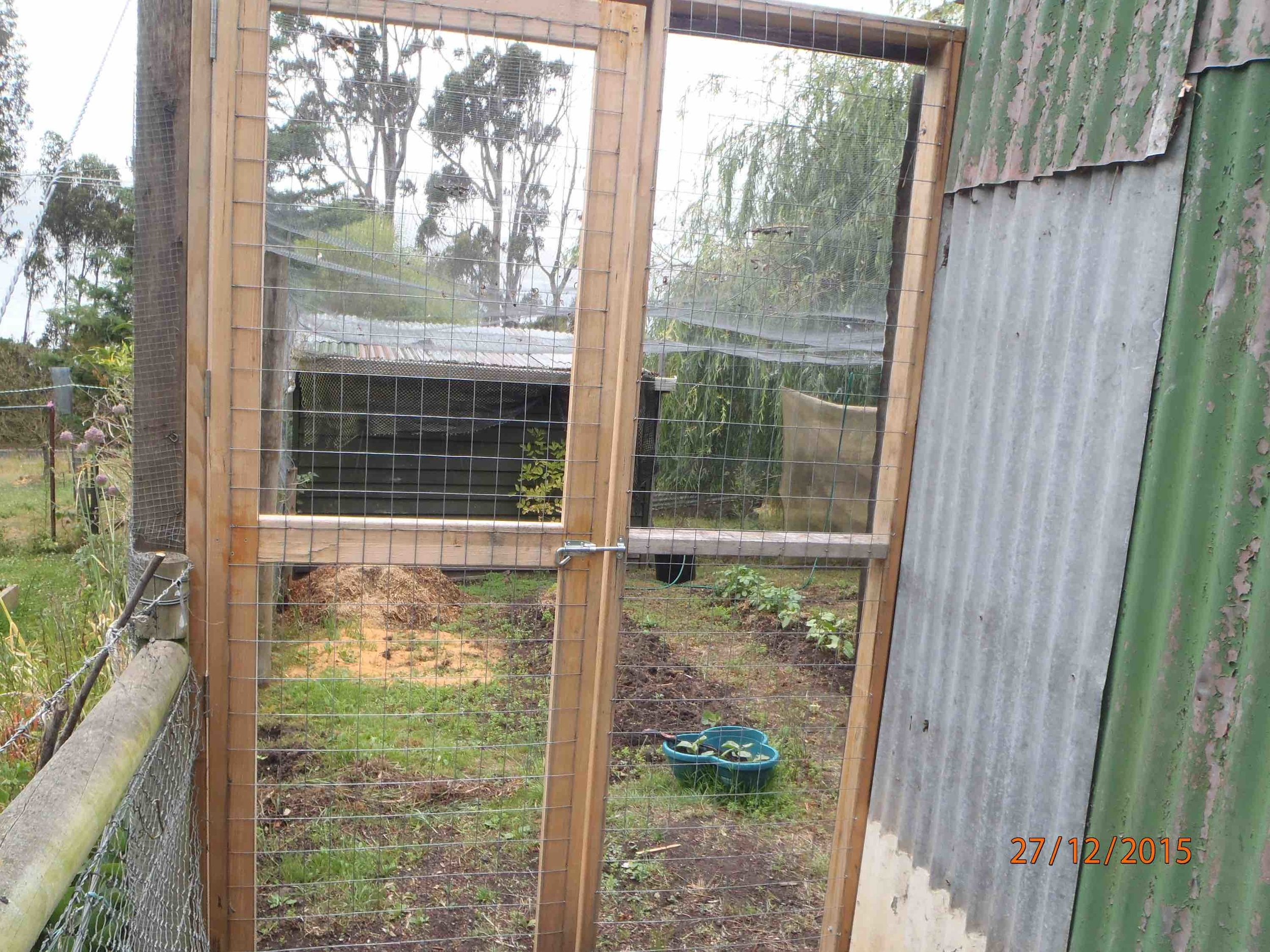 High security hen yard, enclosed on all sides and top