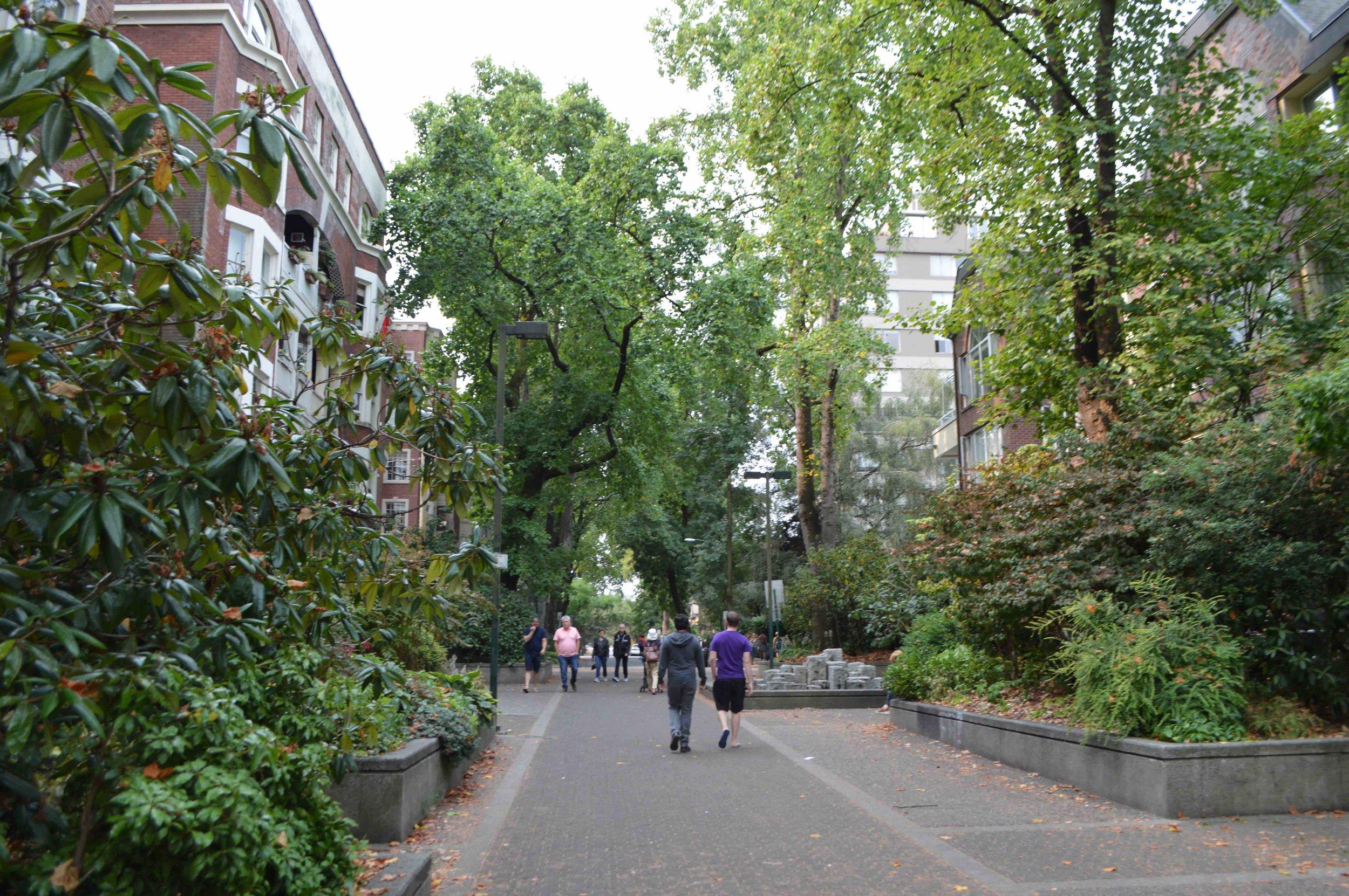 streetscape2.jpeg