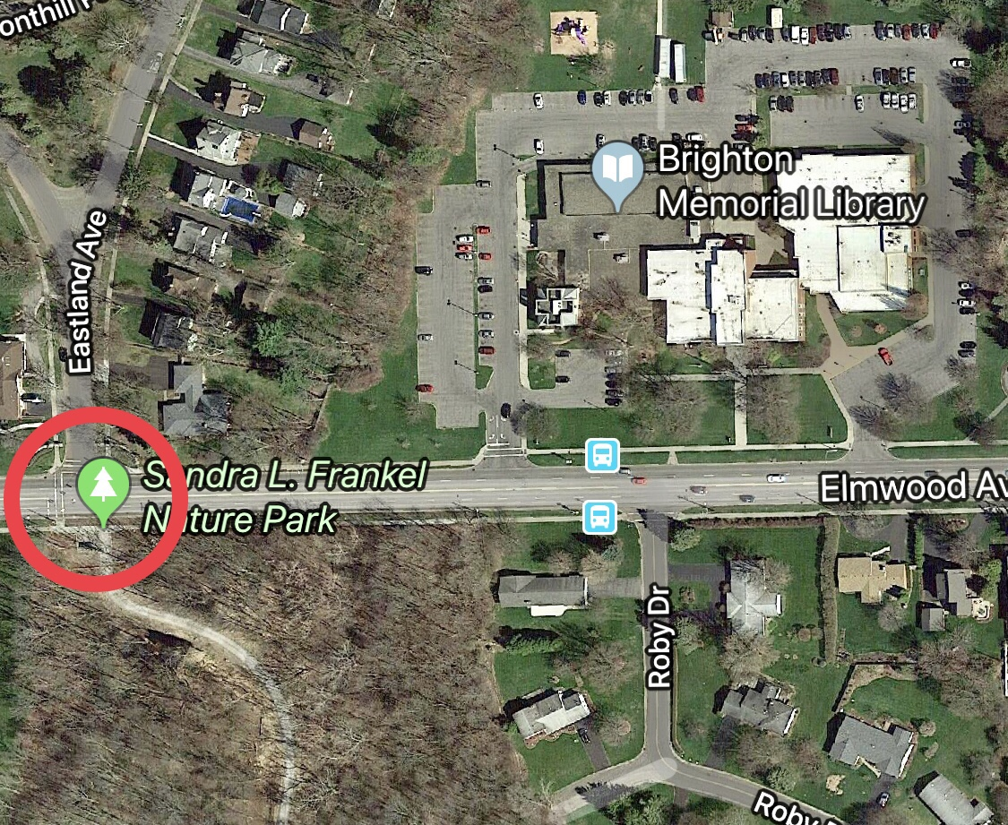 Want to get to the library from the south side of Elmwood Avenue? The nearest crosswalk is circled in red.
