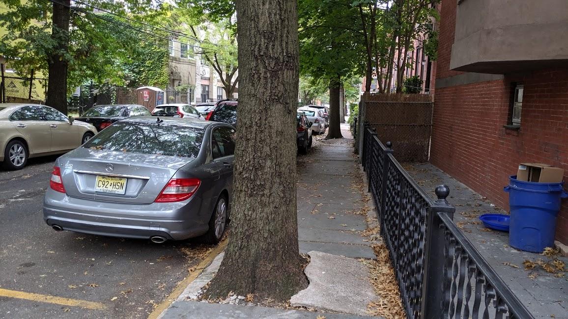 Sidewalk with a tree trunk in Hoboken, New Jersey.