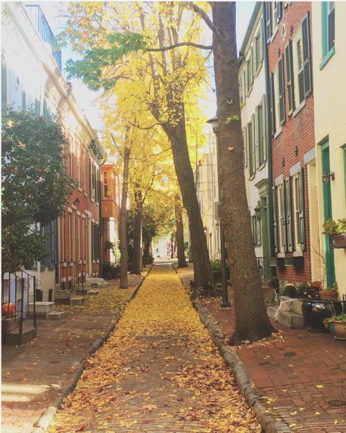 Panama Street; minor street of Philadelphia.