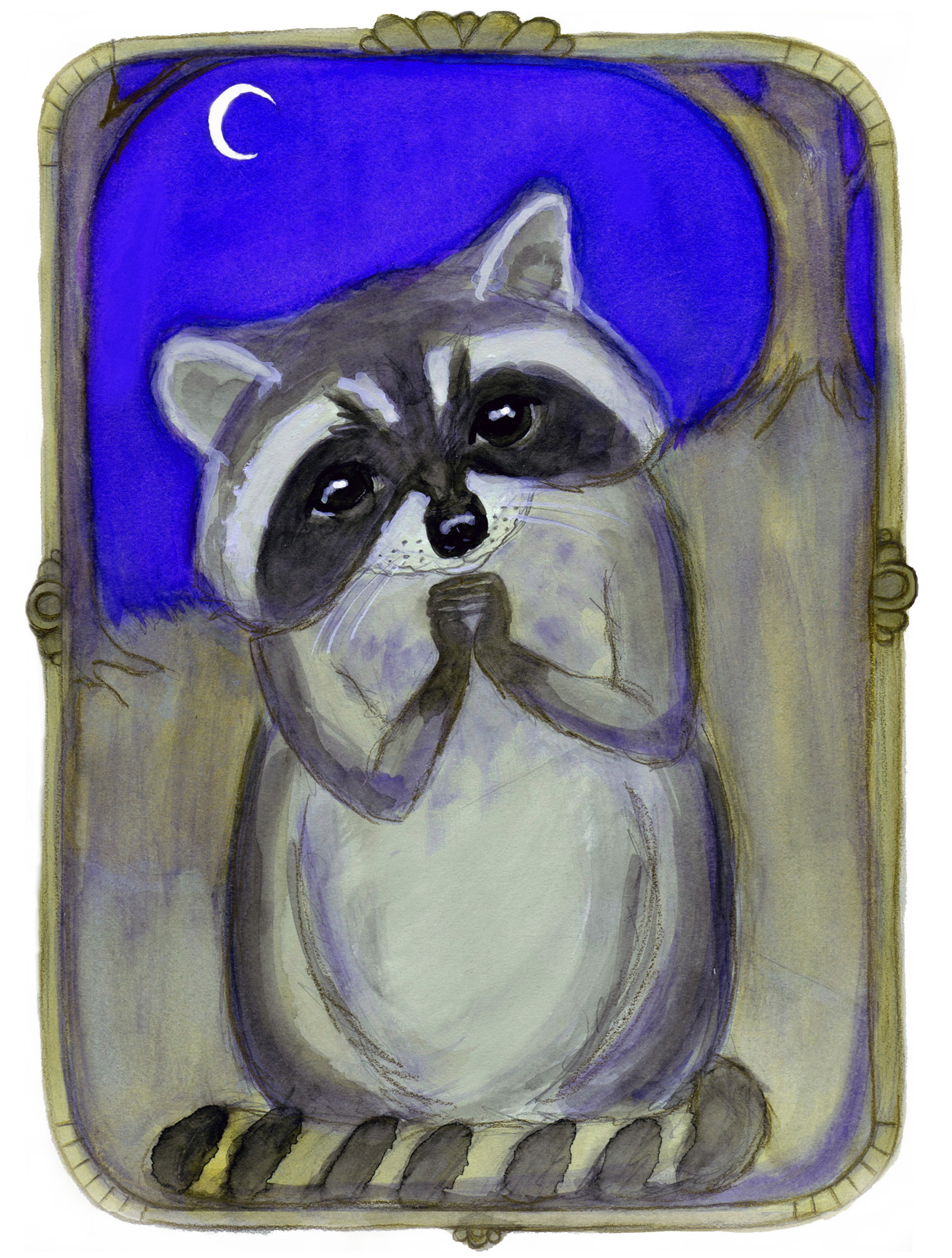 Reginald Raccoon and the Moon