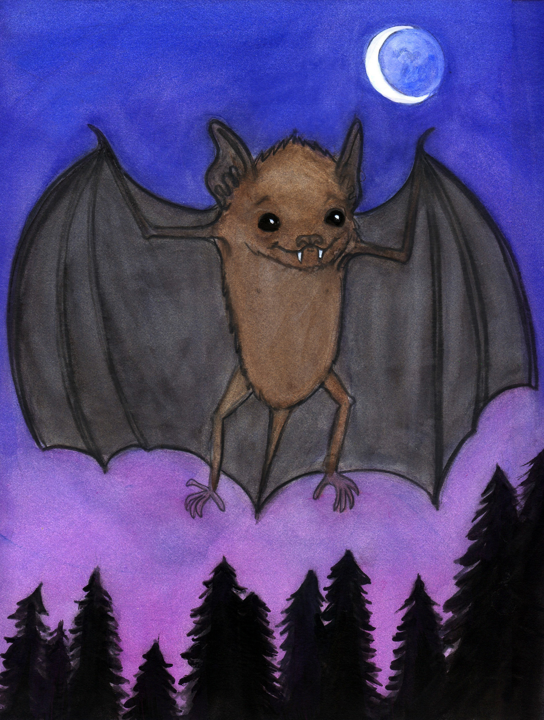 Herman the Little Brown Bat
