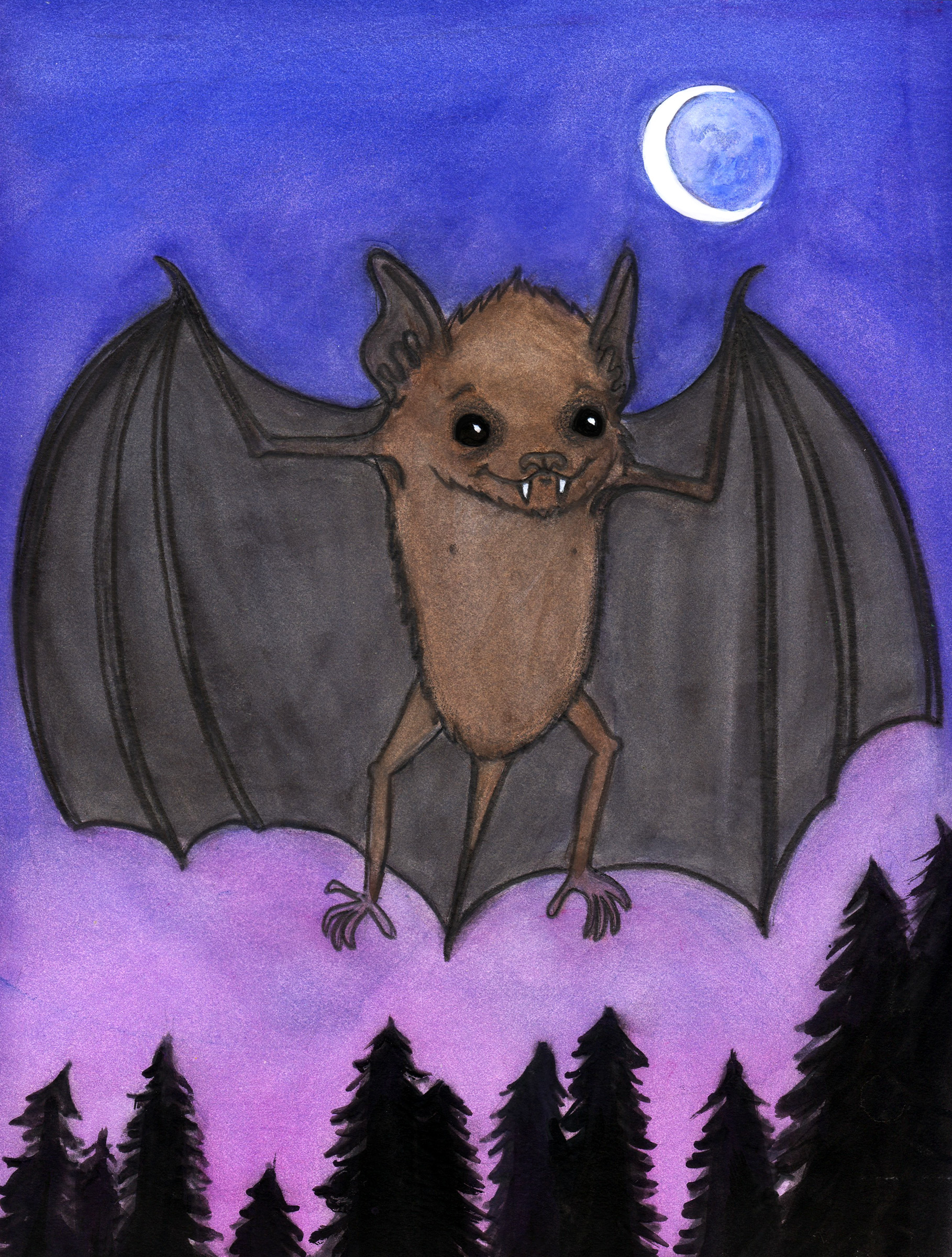 Herman baby brown bat
