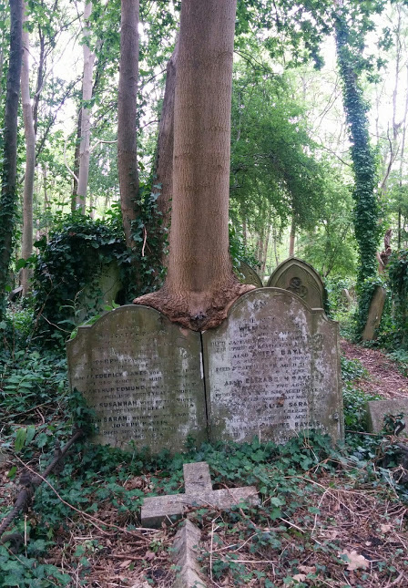 Two Graves Bound at Highgate Cemetery