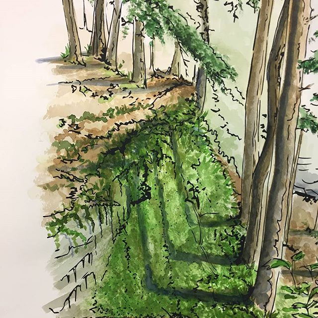 Hocking Hills Watercolor by Leah Storrs  This is just a sneak peak of Overlook, the February gallery featuring overlooked landscapes by Columbus artist @leahstorrs Join us for the public gallery opening tonight at 7pm. Members get in for a preview at 6. These landscapes may be overlooked, but the art they've inspired certainly will not.  #artontap #wildgoosecreative #overlook #artmakescbus