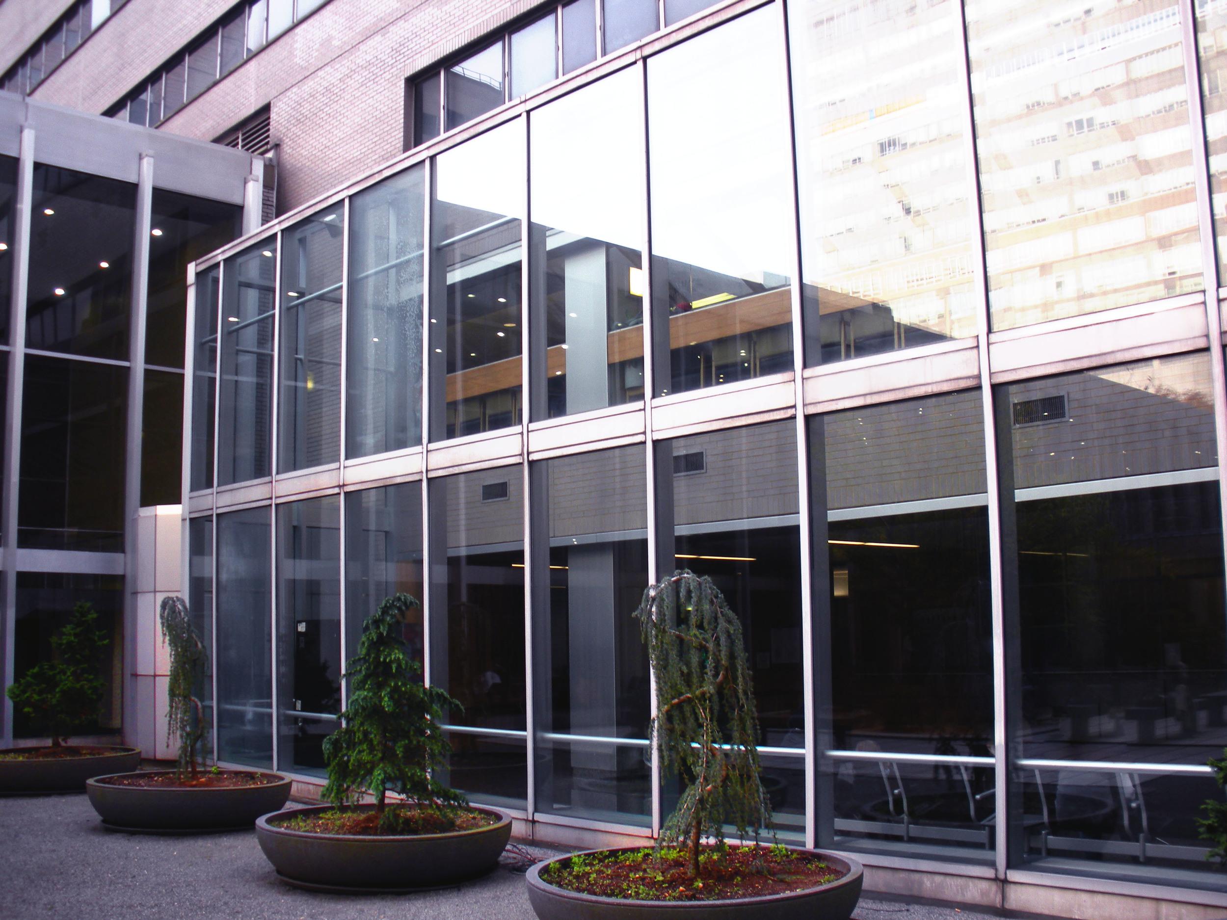 NYU Langone Medical Center.JPG