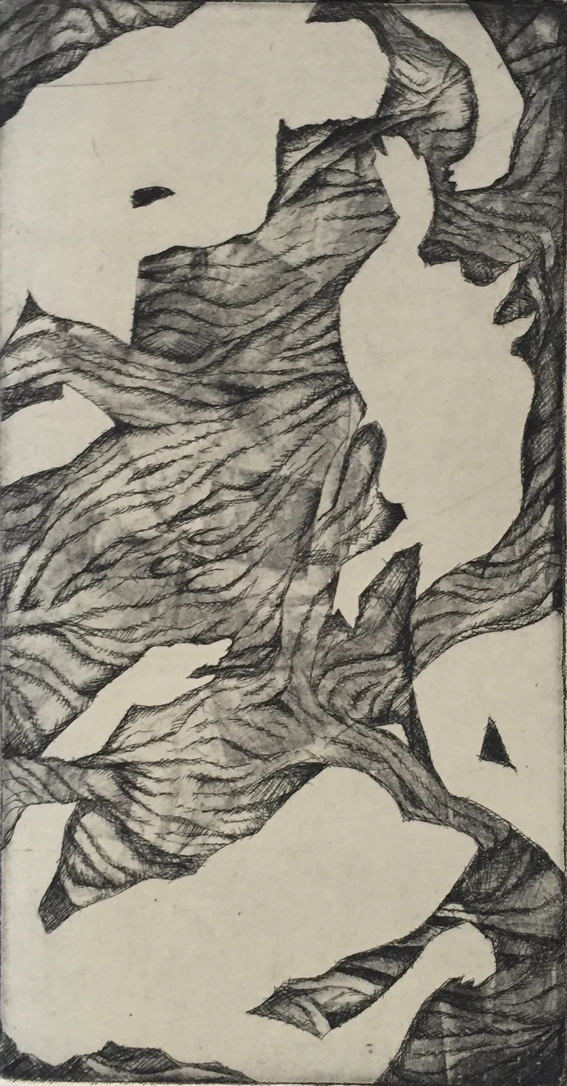 MAGGIE FISHER Untitled etching