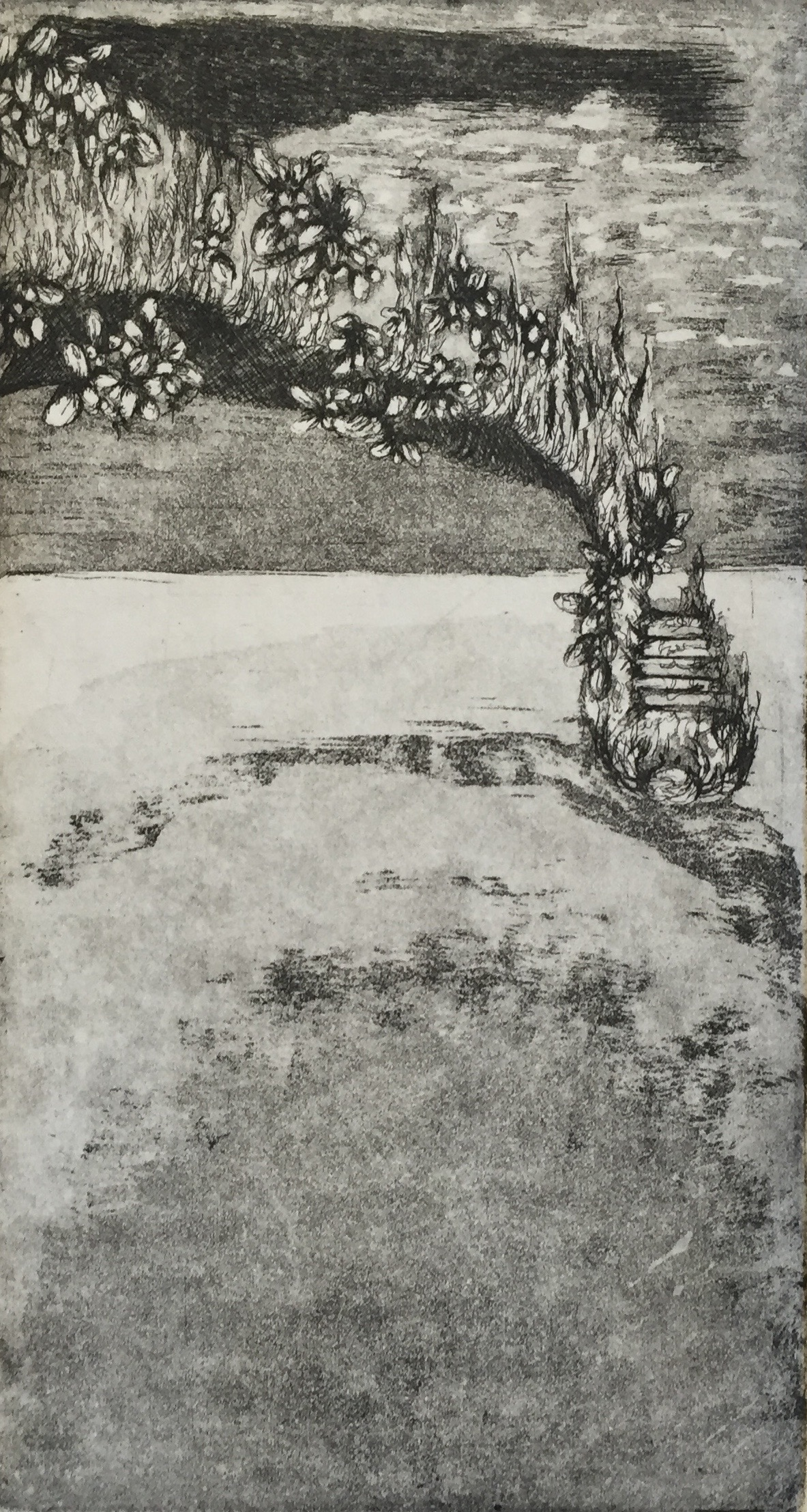 MALLORY ZONDAG Decay of Venice etching