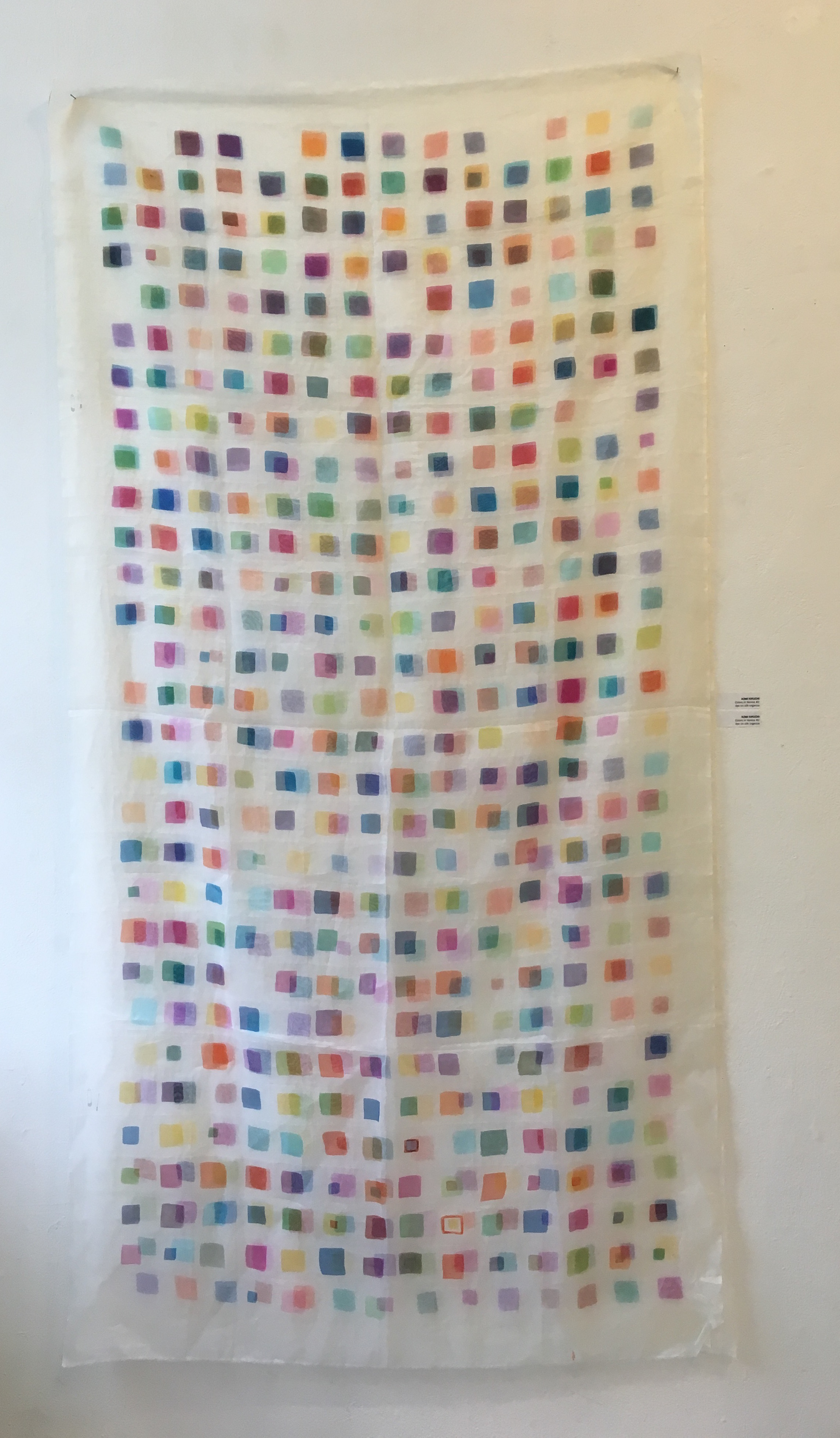 "Aomi Kikuchi, ""Colors in Venice #1,"" (dye on silk organza) ""Colors in Venice #2"" (dye on silk organza)"