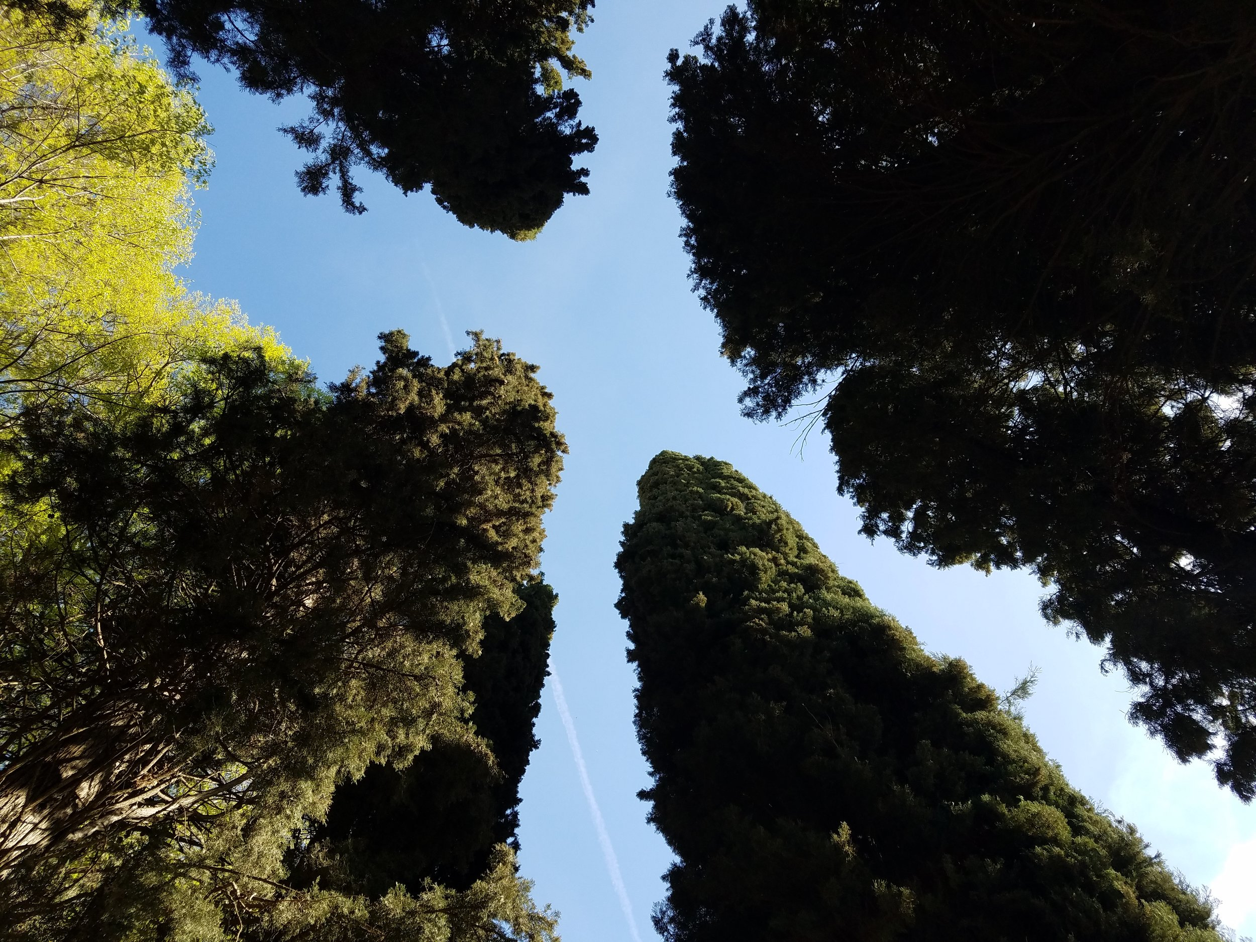Generalife, Granada, ES - April 2017