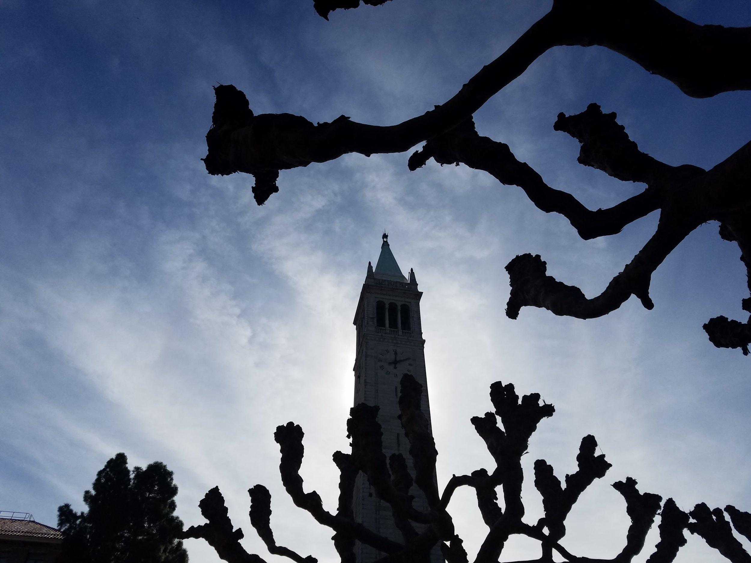 The Campanile (Sather Tower), Berkeley, CA Feb 2018