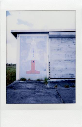 Copy of Artificial Color, Florida Everglades Series