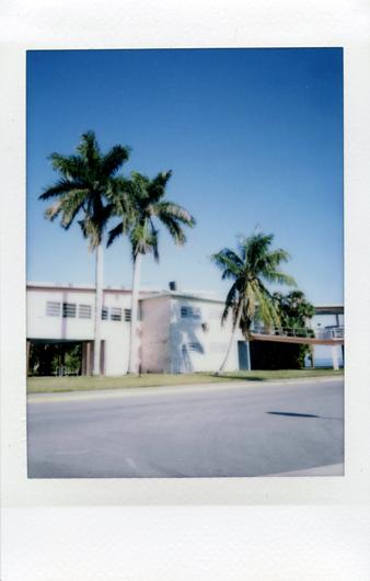 Artificial Color, Florida Everglades Series