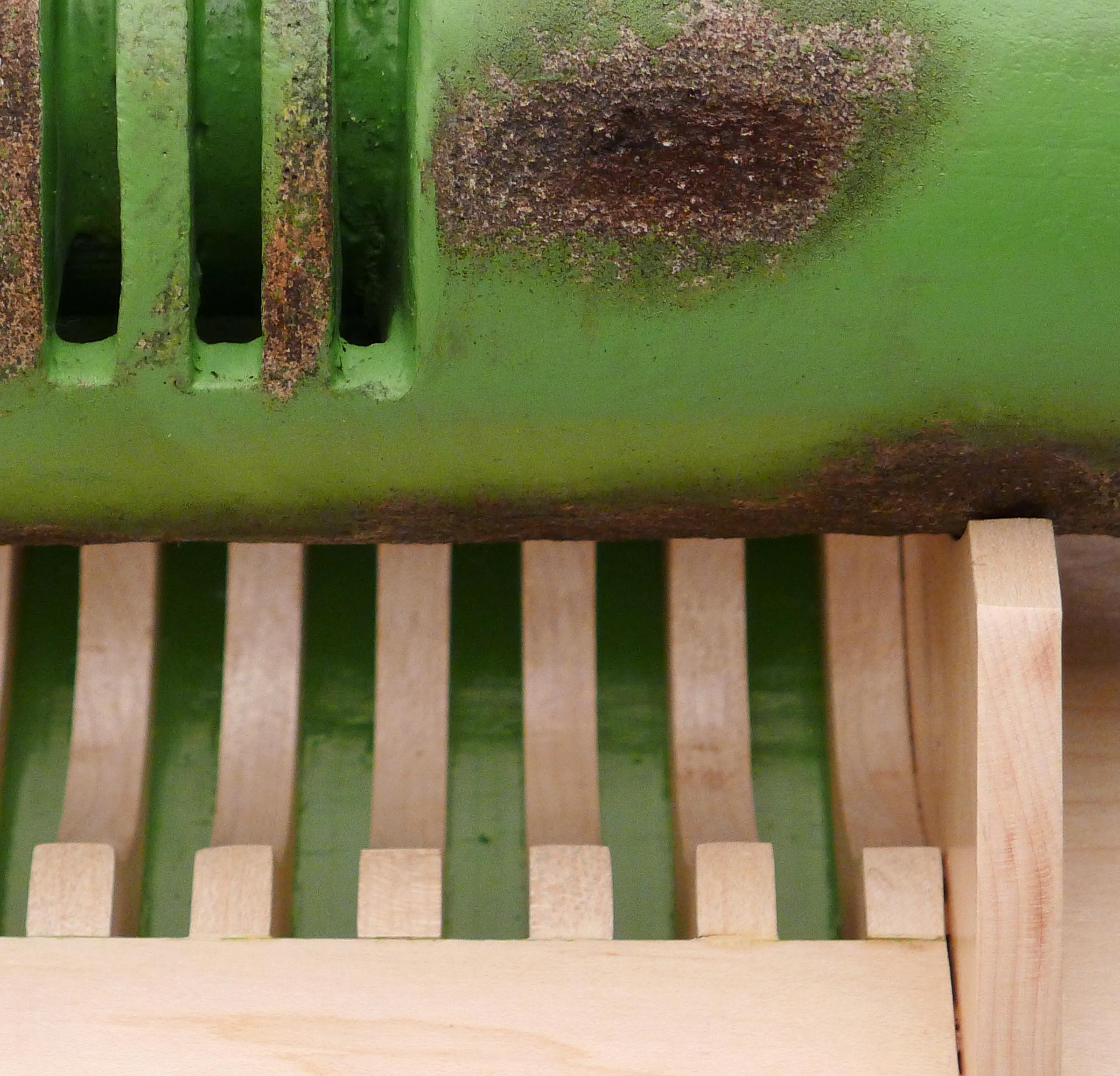 21829 Steiger Green