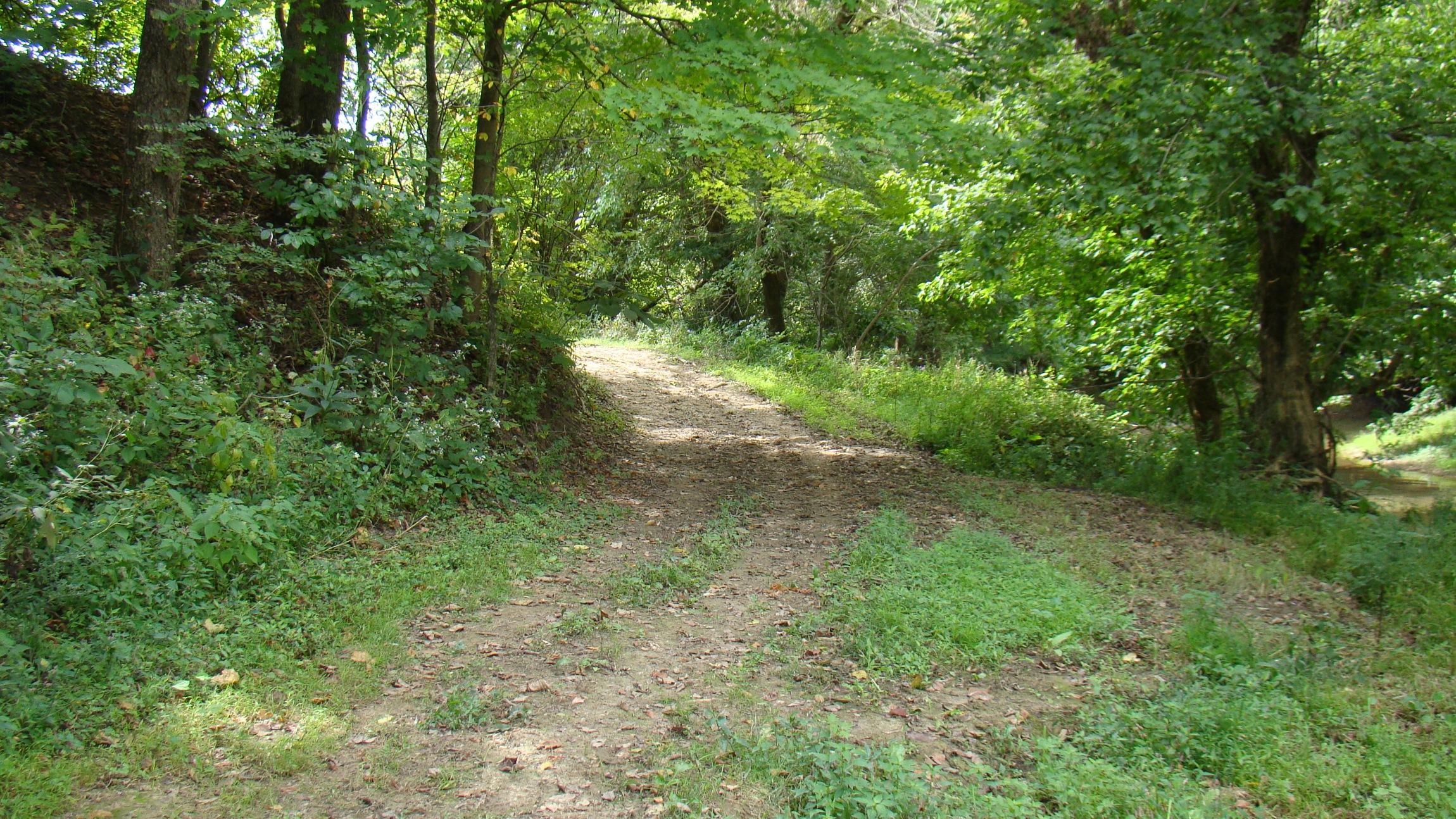 Back Trail