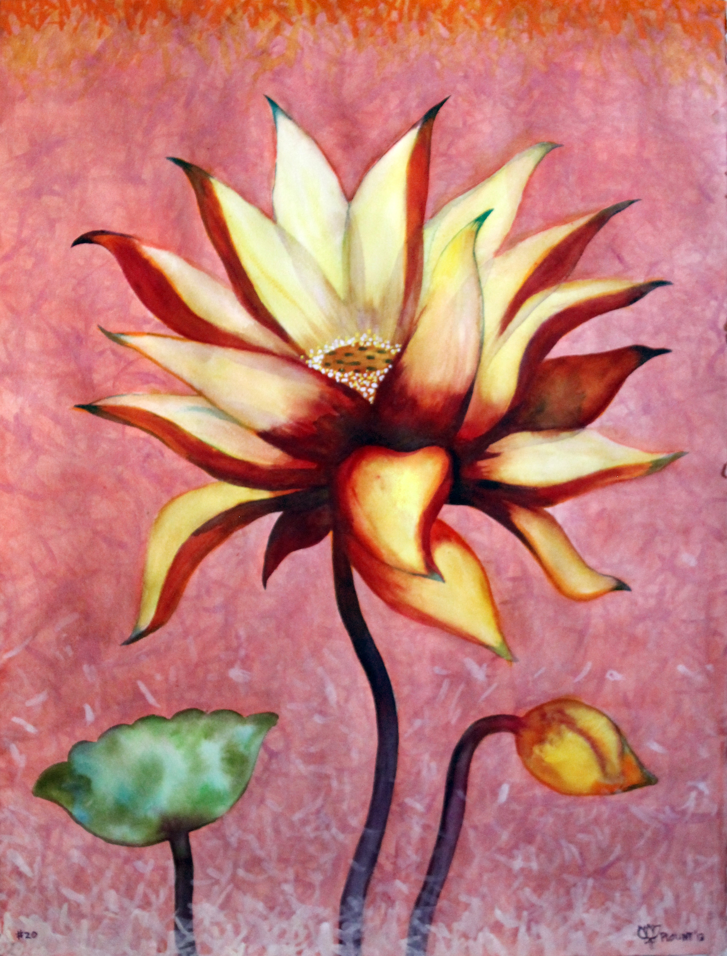 """Lotus    Watercolor on 140# Arches WC Paper 30"""" x 22"""" each  © 2012"""