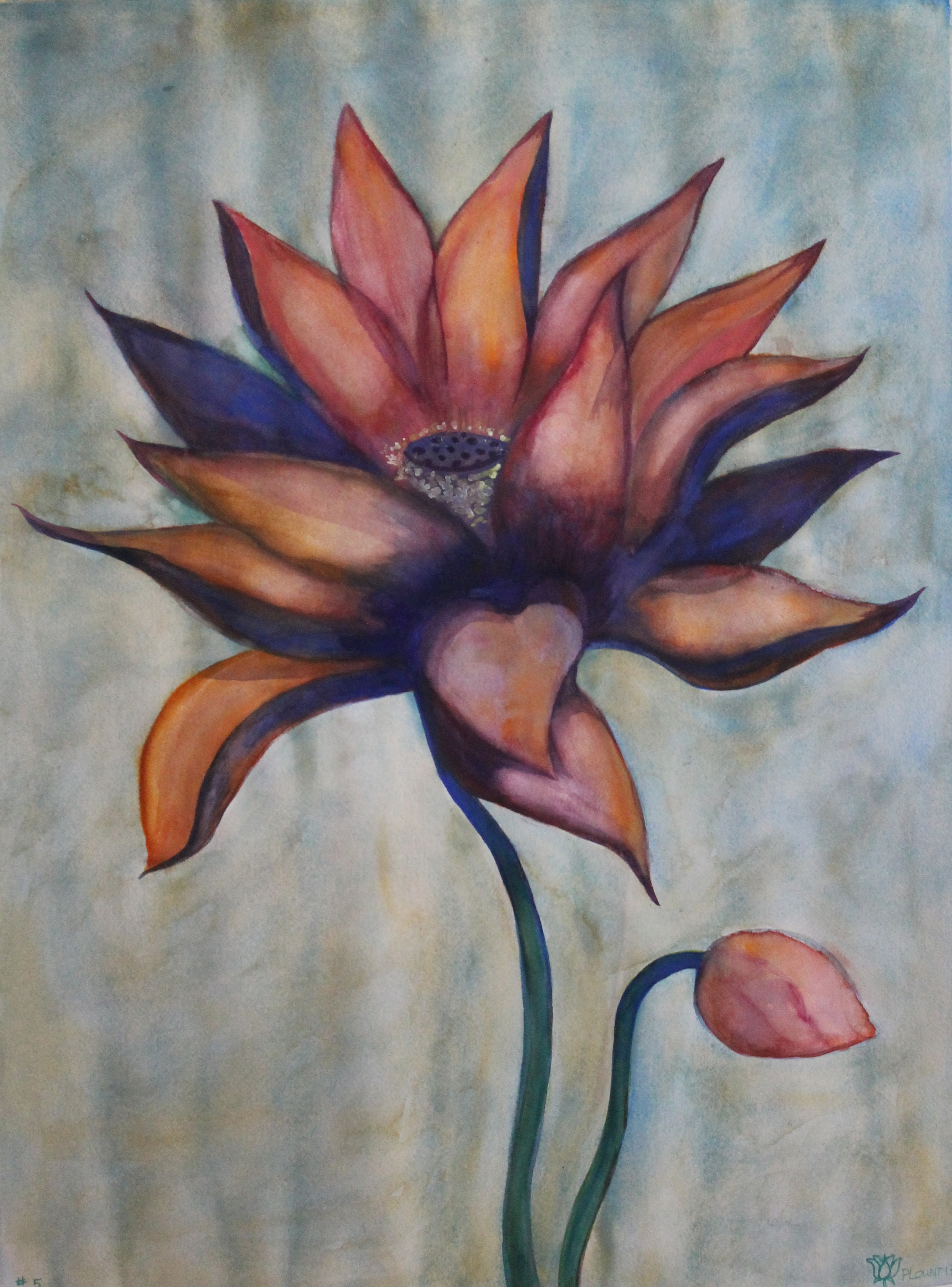 """Lotus    Watercolor on 140# Arches WC Paper 30"""" x 22"""" each ©2012"""