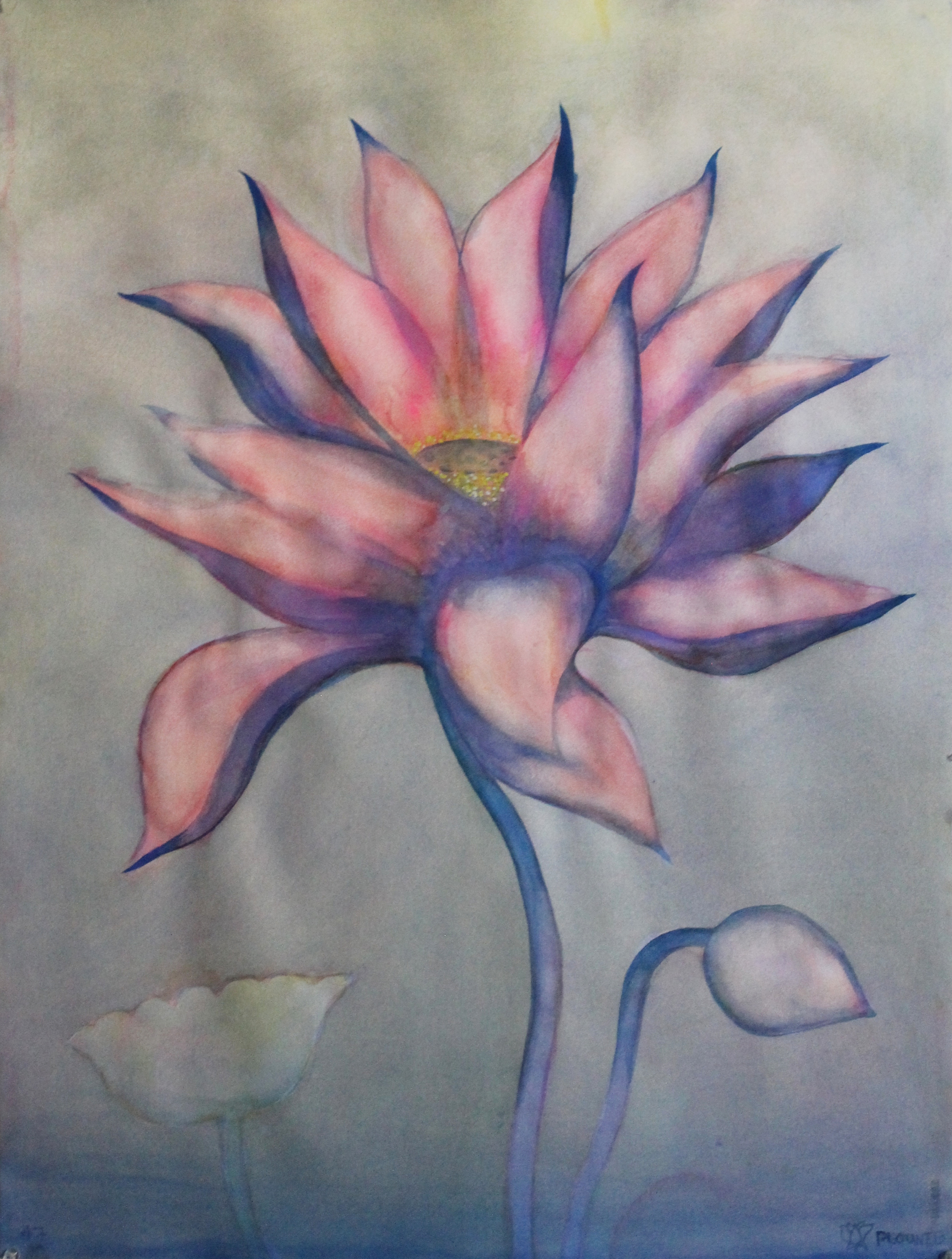 """Lotus    Watercolor on 140# Arches WC Paper 30"""" x 22"""" each  ©2014"""