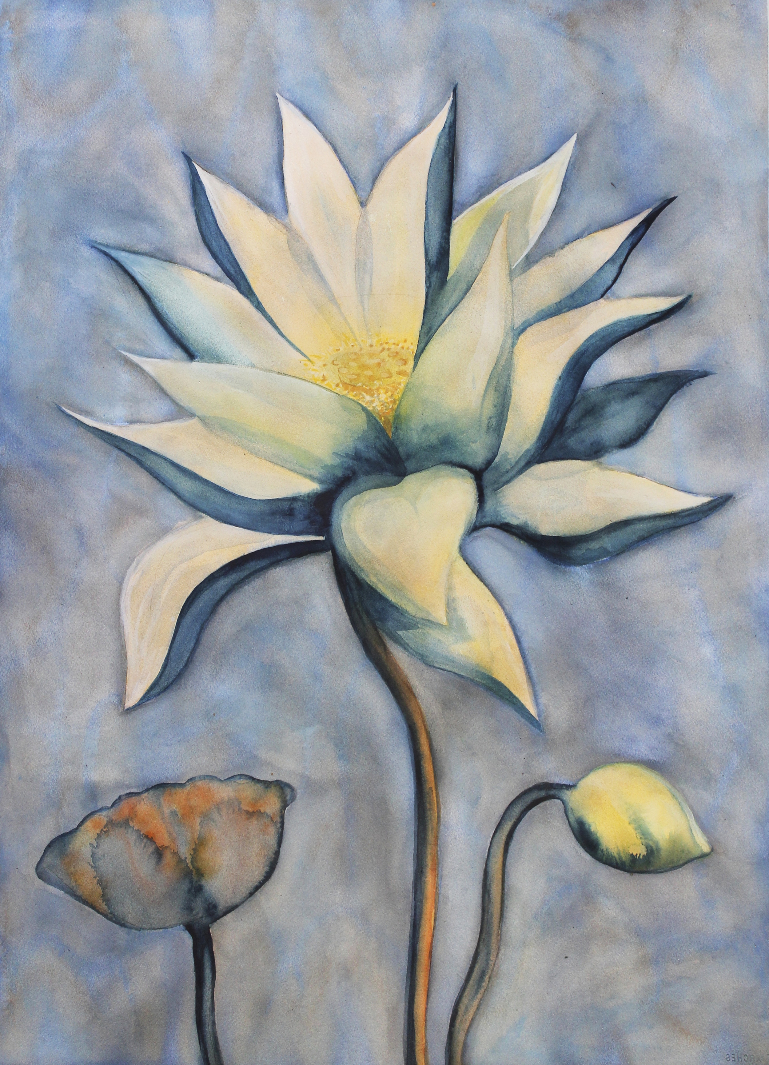 """Lotus    Watercolor on 140# Arches WC Paper 30"""" x 22"""" each  ©2015"""