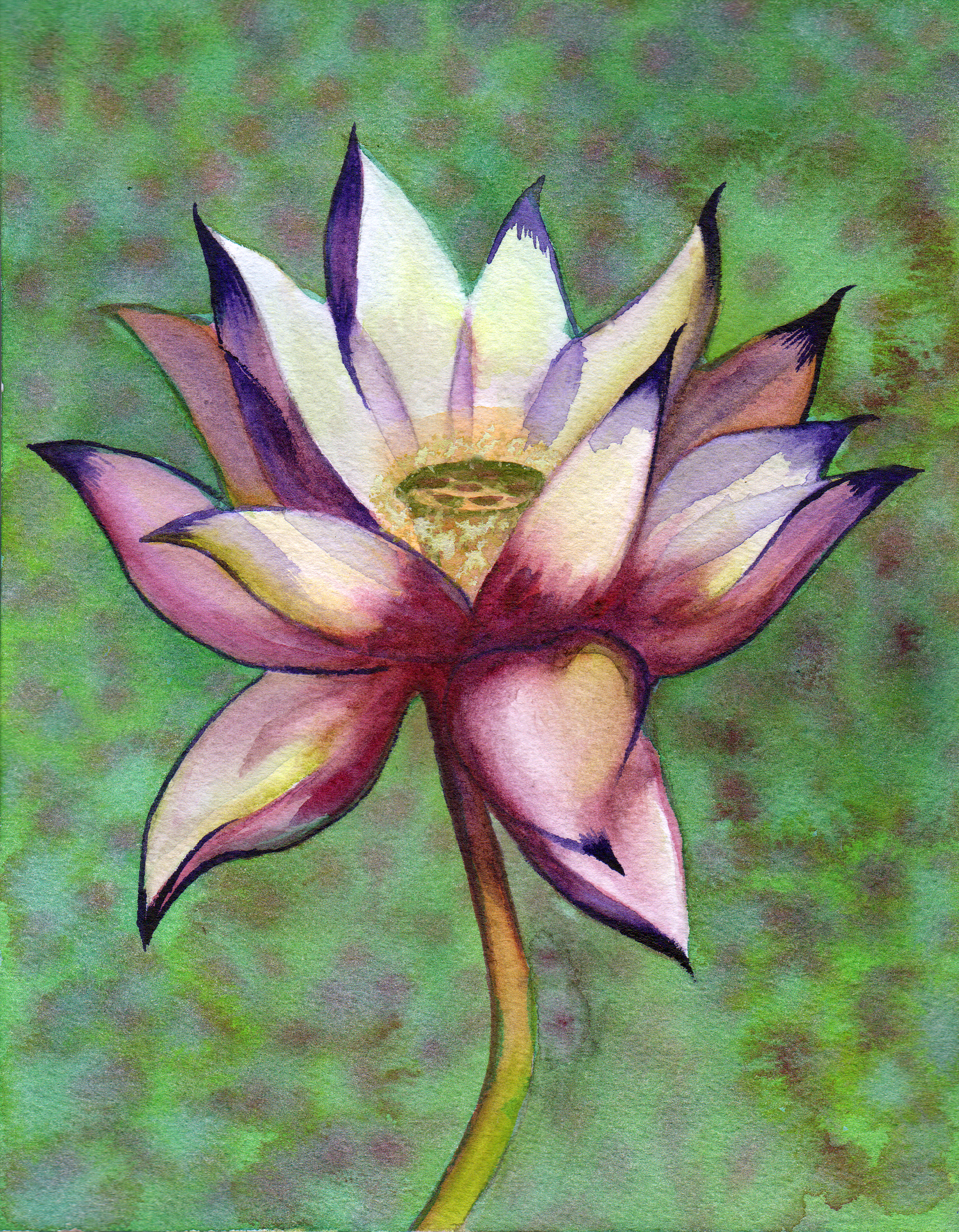small lotus 10.png