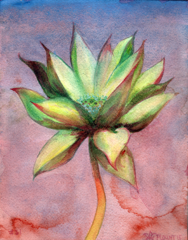 """Lotus, #31   Watercolor on 140# Arches WC paper 8.5"""" x 7"""" © 2014"""