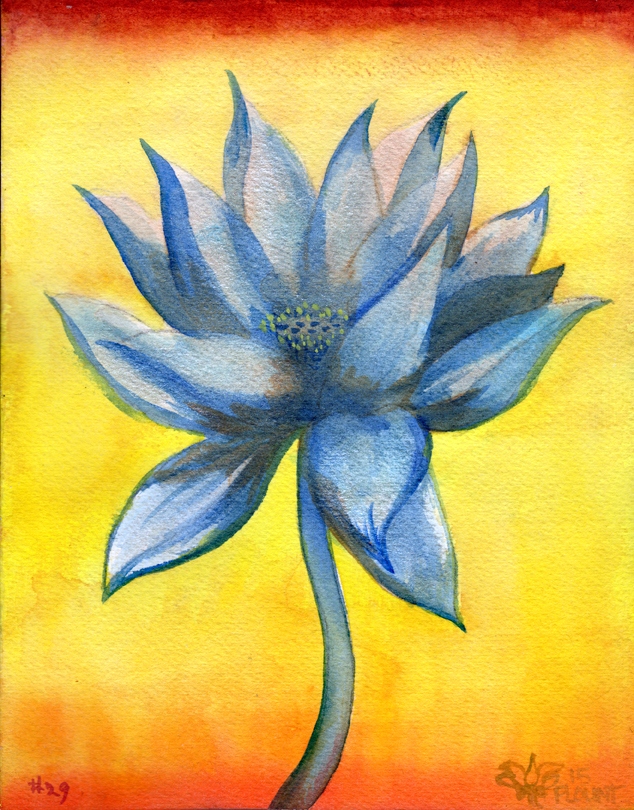 """Lotus, #29   Watercolor on 140# Arches WC paper 8.5"""" x 7"""" © 2014"""