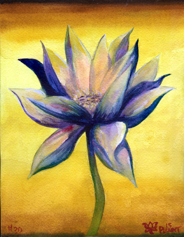 """Lotus, #30   Watercolor on 140# Arches WC paper 8.5"""" x 7"""" © 2014"""