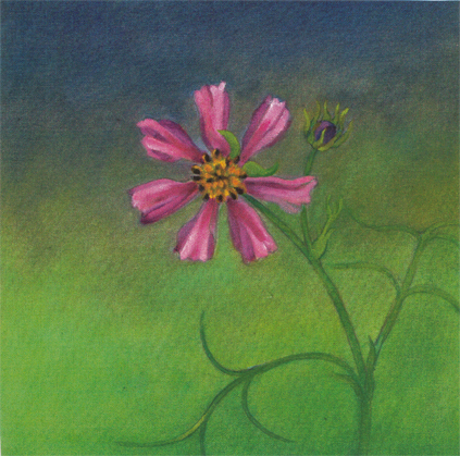 """Cosmos  Oil and Beeswax on Canvas 12"""" x 12"""" © 1998"""