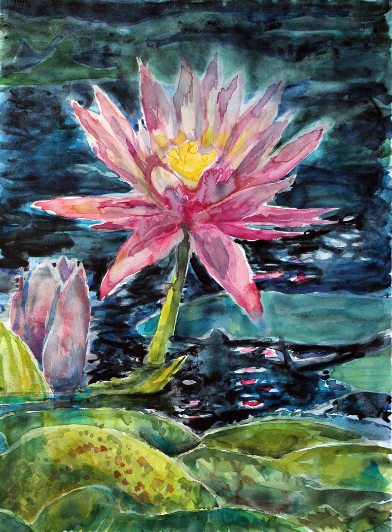 """Lotus, Moon and Clouds  Watercolor on 140# Arches WC Paper 30"""" x 22"""" © 2015"""