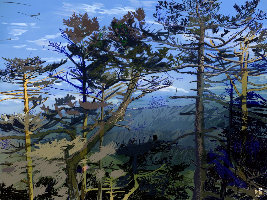 """The Forest @ Sandhakphu, West Bengal, India, Bharat    Electronics Painting, iPad, Procreate, Pencil 53, Photoshop. © 2016 dimensions variable to 48"""" x 60"""" giclee limited edition prints available contact the artist"""