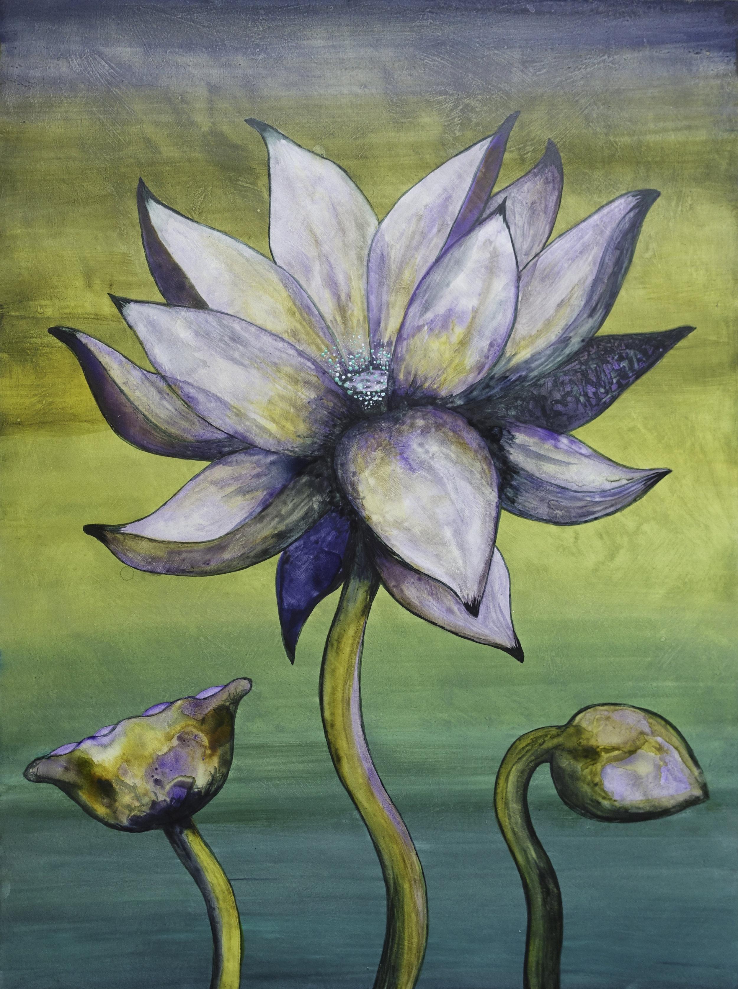 """Lotus, Number 11, Series 2    Watercolor on wood 24"""" x 18"""" (60.96cm x 45.72cm) © 2017"""