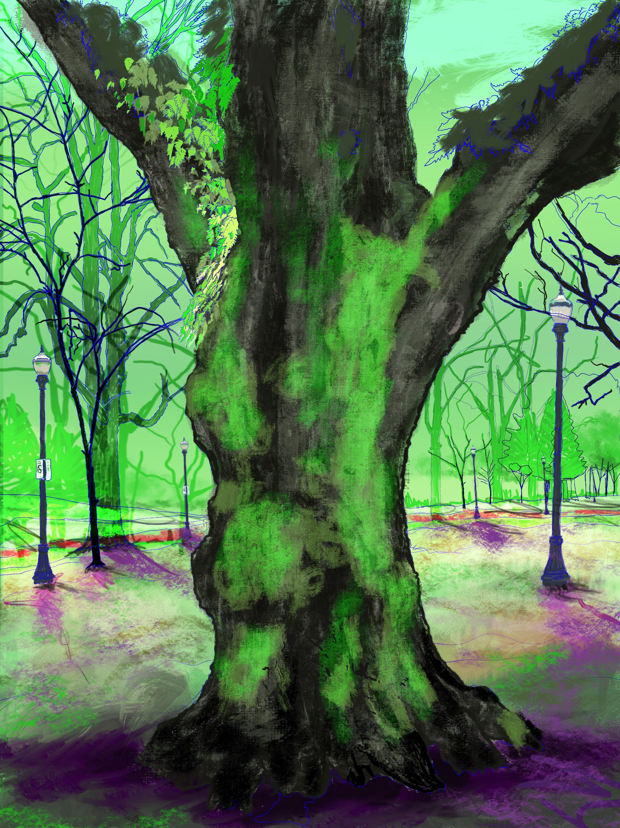 """Giant Moss Covered Tree,  North Park Blocks. Portland, OR   19""""x13"""", (48.26x33.02cm) Dimensions Variable   Electronics Painting, iPad, Procreate, © 2017"""