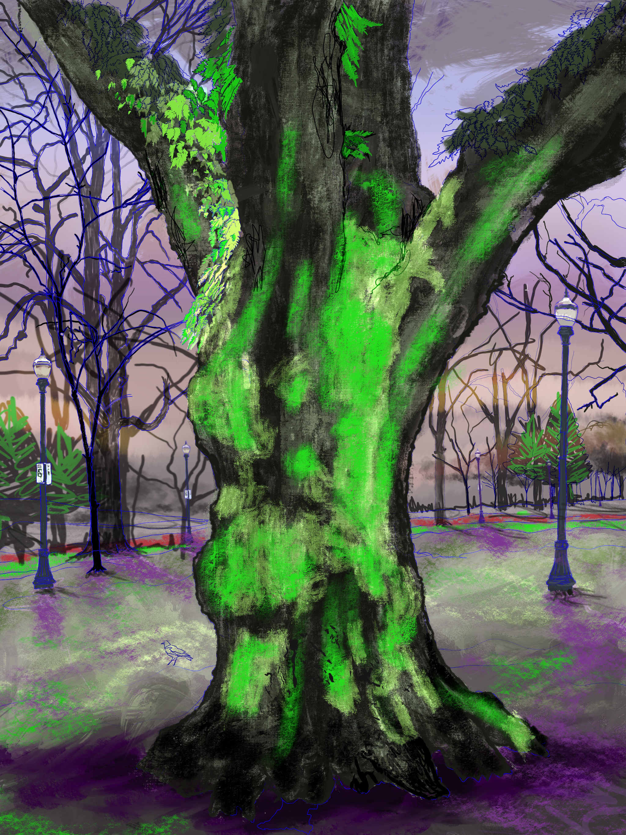"""Giant Moss Covered Tree, 3, North Park Blocks. Portland, OR   19""""x13"""", (48.26x33.02cm) Dimensions Variable   Electronics Painting, iPad, Procreate, © 2017"""