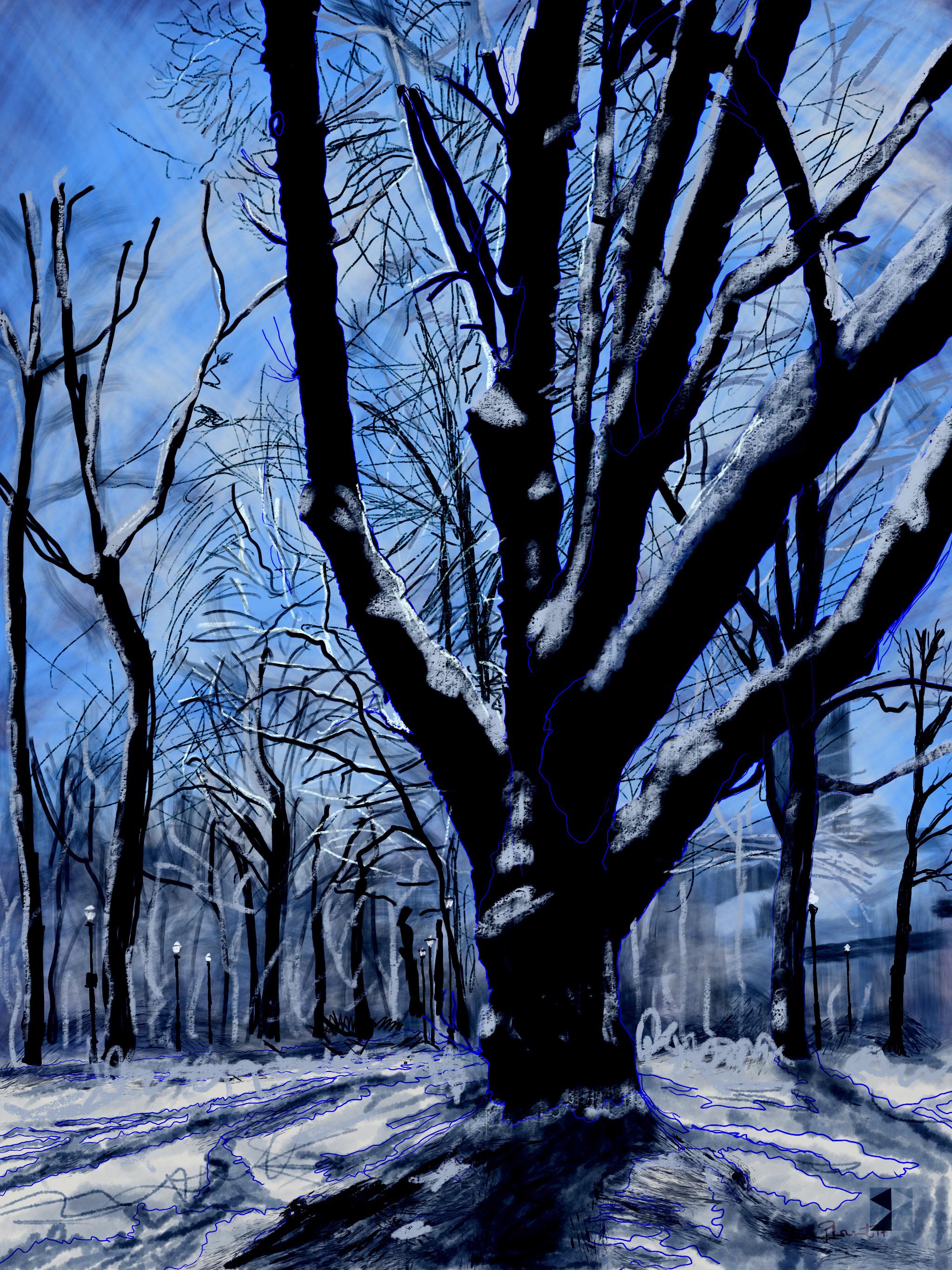 "Winter, North Park Blocks. Portland, OR   19""x13"", (48.26x33.02cm) Dimensions Variable   Electronics Painting, iPad, Procreate, © 2017"