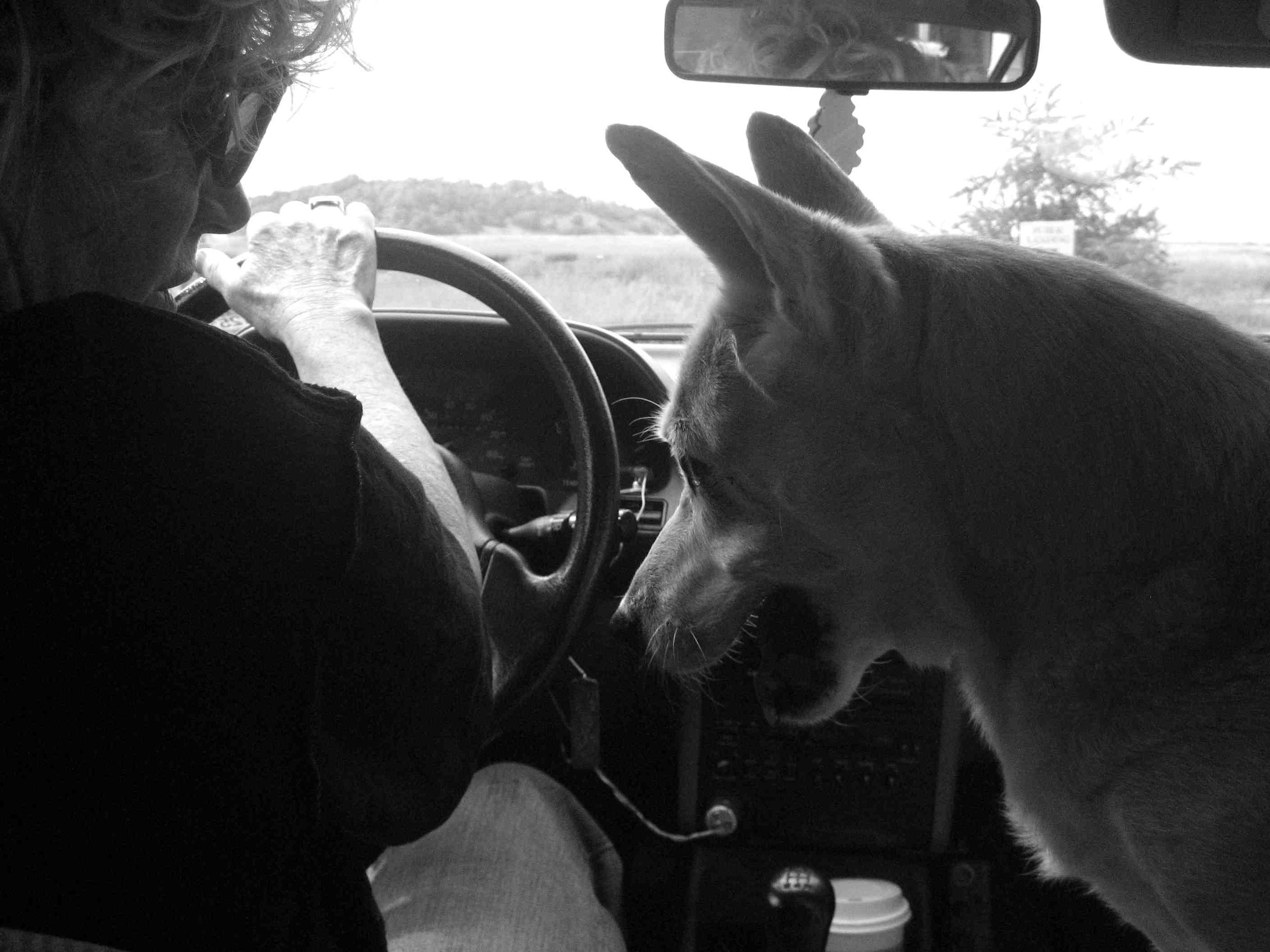 Driving around Provincetown with Sharon & Peg, 2006