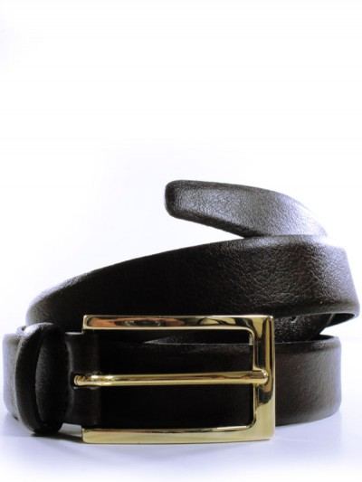 Dark brown belt with a gold buckle