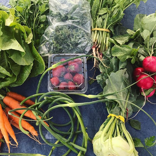 CSA Week #3! Carrots, kohlrabi, parsley, strawberries and more! Lots of new things being harvested every week! #csa #buylocal #fresh #farm