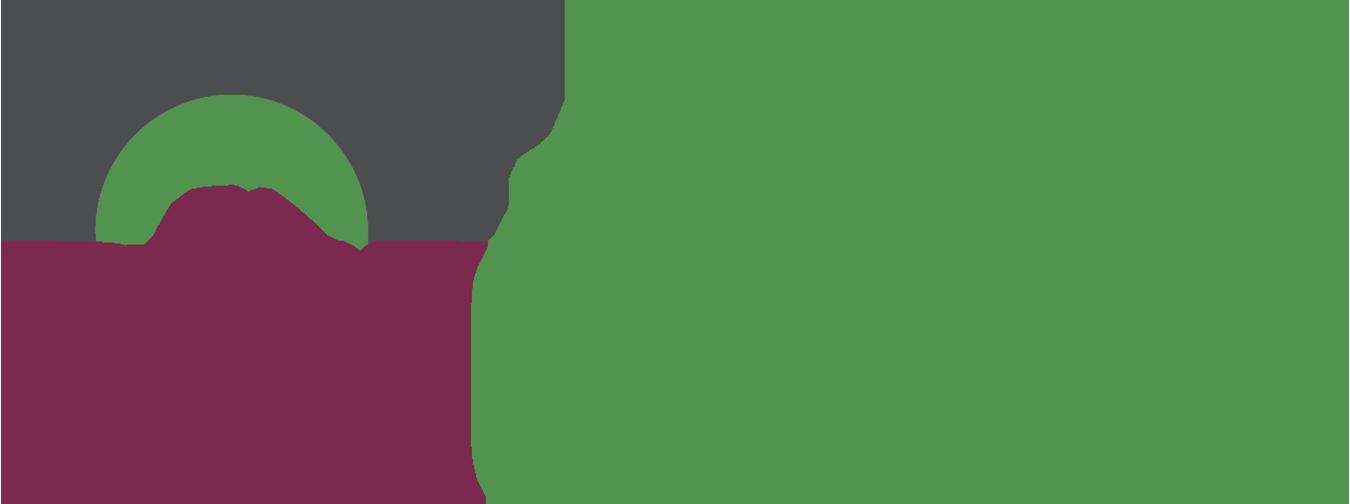 Rim Guard.png