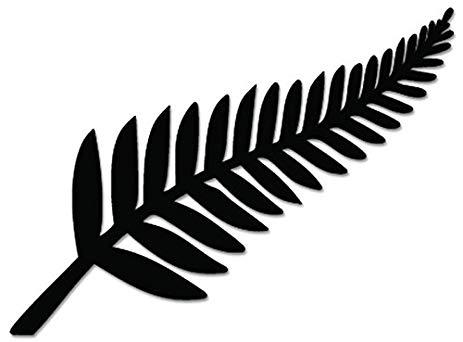 black-fern.jpg
