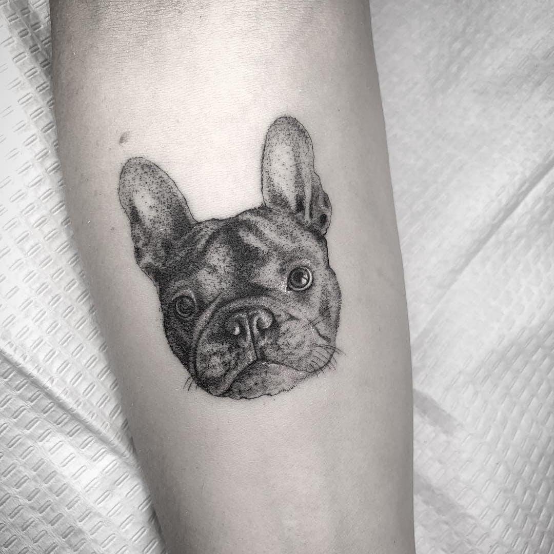 dog-pr.jpg