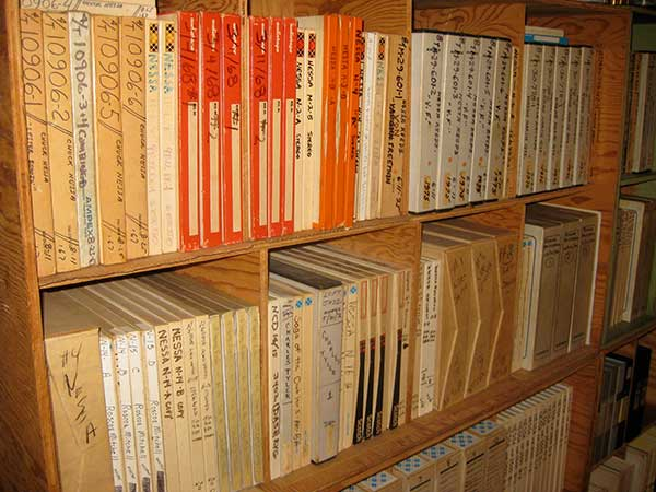 Nessa Archives