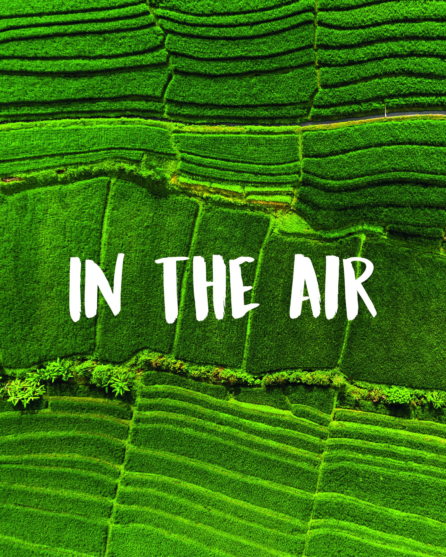 in the air ecat cover.jpg
